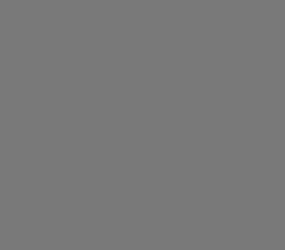 Фон FST пластиковый, 100 х 200 cм, матовый, серый фото