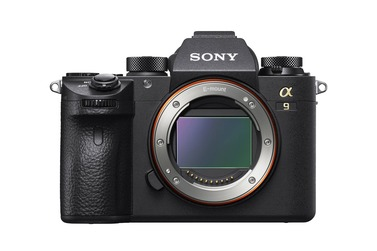Small sony a9 body cat 1